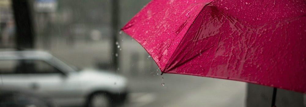 umbrella insurance Shoreline WA